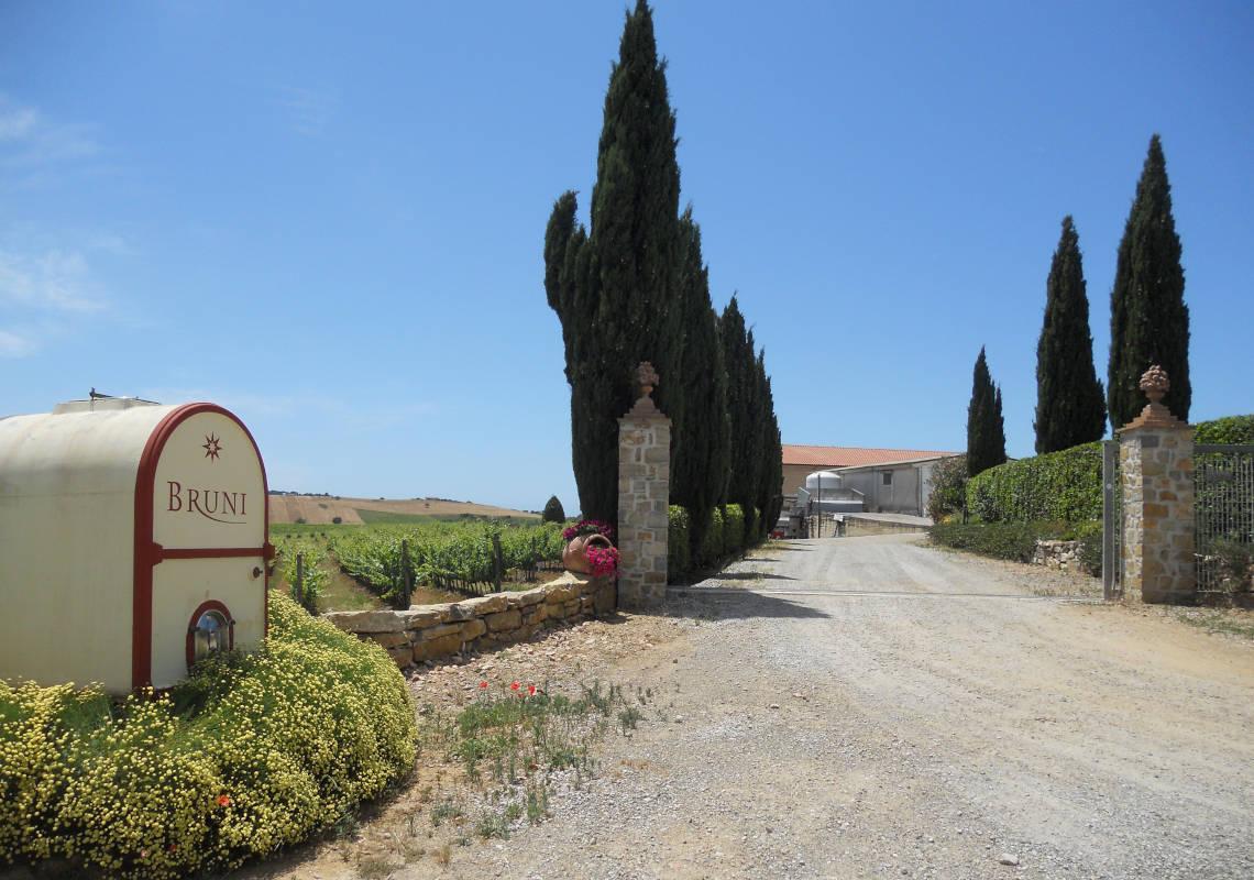 Cantine Bruni - Azienda Vitivinicola in Maremma